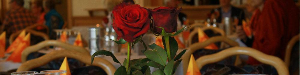 DiaShow_rose