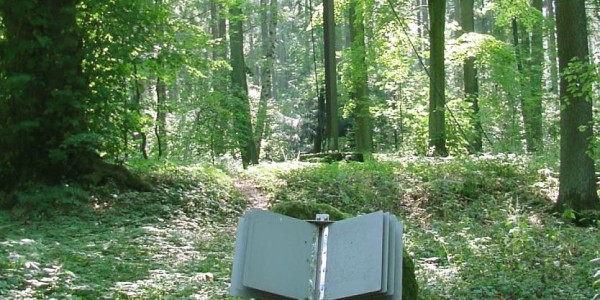 buch-pestfriedhof